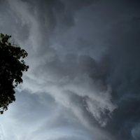 В черном чреве бури... :: Людмила