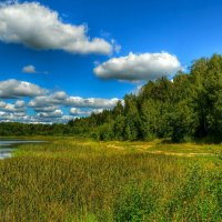 Дорога вдоль берега :: Милешкин Владимир Алексеевич
