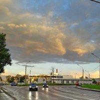 После дождя :: Валентина Папилова