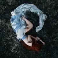 Snail. :: Елизавета Иода