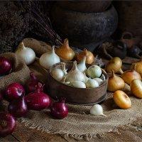 Три цвета лука :: Ирина Лепнёва