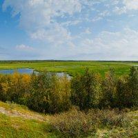 Уж лето осенью дышало... :: Yuri Mekhonoshin