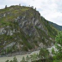Вид на реку Катунь :: Эльф ```````