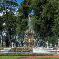 Коронный фонтан :: Valeriy Piterskiy