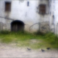 Заросший дворик :: galina bronnikova