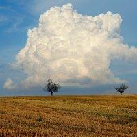 грозовое облако :: Elena Wymann
