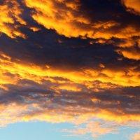 Тучи,подсвеченные солнцем. :: Борис Митрохин