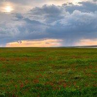 Весенняя гроза над степью. :: Фёдор. Лашков