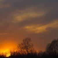 Пламенеющий закат :: Алексей Шевкунов