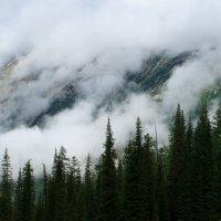Вздымая облака на острие вершин :: Наталья Карышева