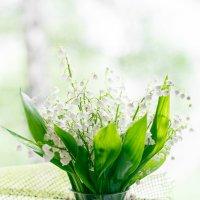 Весна на подоконнике :: Юлия Ржевская