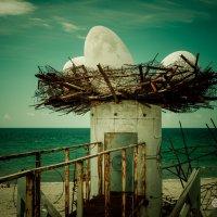 Однажды на затерянном острове... 3 :: Михаил Васильев