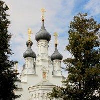 Владимирский собор :: Вера Моисеева