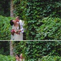 Ах эта свадьба пела и плясала... :: Annet Kuropyatnik