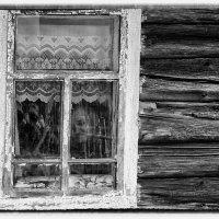 Двое из окна :: Владимир Миронов