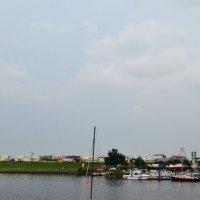На реке :: Ольга