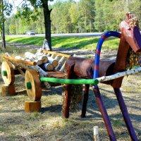 полесская лошадка :: Александр Прокудин