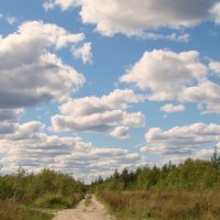 Пейзаж с облаками :: Елена Перевозникова