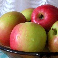 Яблочки к празднику :: Татьяна Смоляниченко