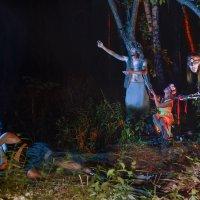 Ночь в лесу ** :: Виктор Выдрин