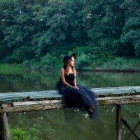 Сказка в лесу :: Violafoto5