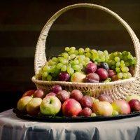 fruits :: Pasha Zhidkov