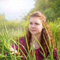 Олена4 :: Сергей Куцев