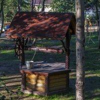 Колодец,колодец дай воды напиться :: Сергей Цветков