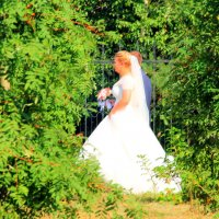 Невеста легкою походкой... :: Юрий ВОВК
