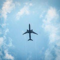 самолет :: Anna Enikeeva