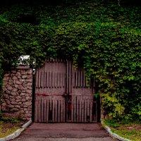 Ворота :: Павел Кореньков