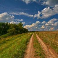 Пройтись вдоль поля :: Александр