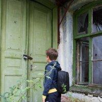 старый дом гостей не ждет... :: Наталья Литвинчук