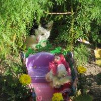 Кукла в санях и кошка в цветах :: Дмитрий Никитин