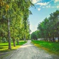Зелёный парк :: Света Кондрашова