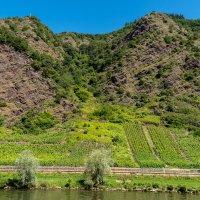 В долине реки Мозель :: Witalij Loewin