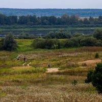Широка страна моя родная! :: Валерий Гудков