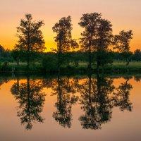 Отражение. :: Борис Кононов