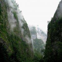 Горы Абхазии. :: Валерия  Полещикова