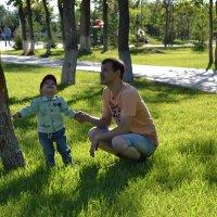 Когда деревья были большими... :: Anita Lee