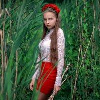 Красное :: Ольга Титова