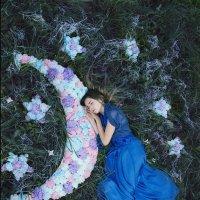 мечты на луне :: Kristi Caty