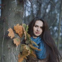 Осень :: Anastasiia S
