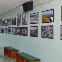 """Персональная выставка-""""Как прекрасен этот мир"""". :: Тамара Бучарская"""
