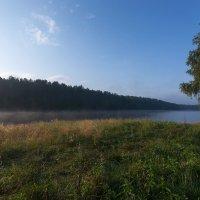 Утро на заливе :: Анатолий Иргл