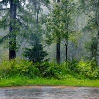 ...а дождь идёт,а дождь идёт.... :: Ольга Cоломатина