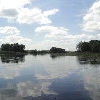 Может ведает река силу в облаках! :: Ольга Кривых