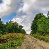 Дорога за горизонт :: Марьяна Далёкая