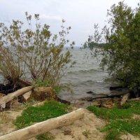 У моря в конце августа. :: Мила Бовкун