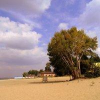Опустевший пляж . :: Мила Бовкун